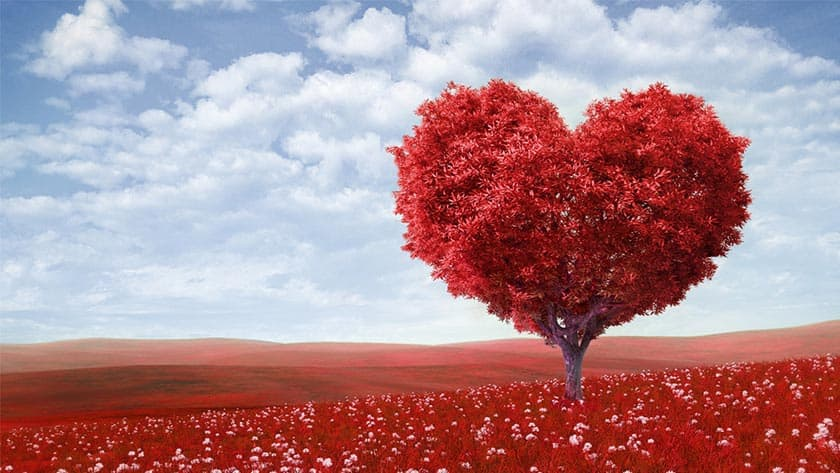 Give the Give of Kindness This Valentine's Day